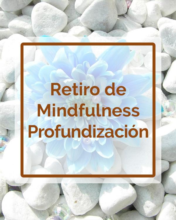 Retiro de Mindfulness - Profundización - Talleres - Betsaida