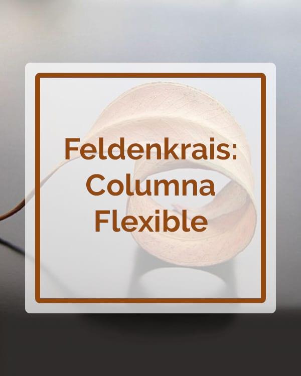 Feldenkrais - Columna Flexible - Talleres - Betsaida