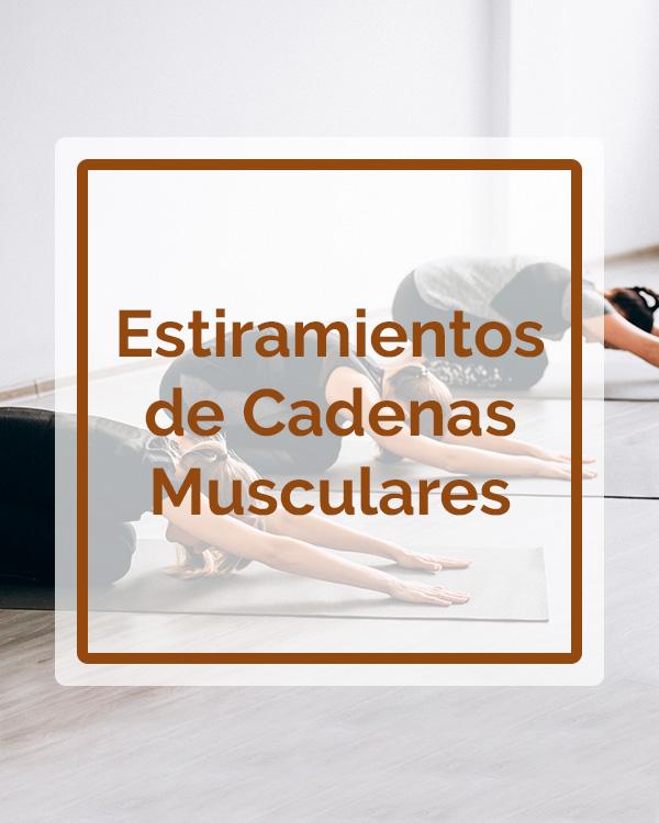 Estiramiento de Cadenas Musculares - Talleres - Betsaida